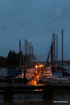 The boats by Monk McQueen's on Flase Creek. Not quite dark enough yet.