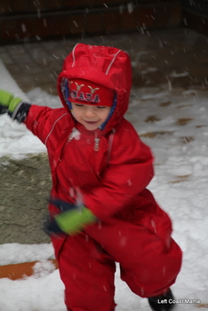 Quinlan excited by the snow.