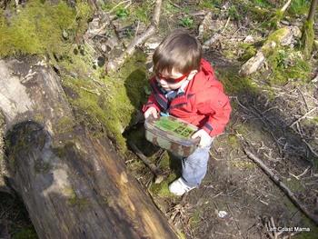 Aidan finding a cache.