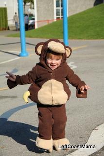 Quinlan as a Monkey